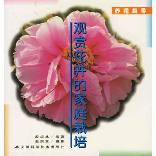 观赏花卉的家庭栽培