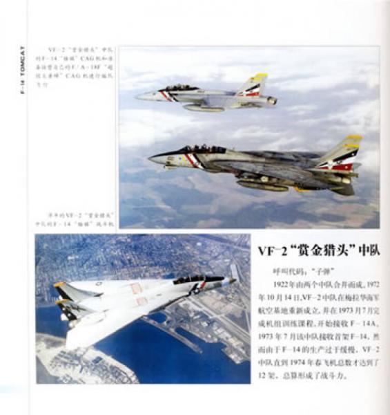 雄猫-F-14舰载多用途重型战斗机