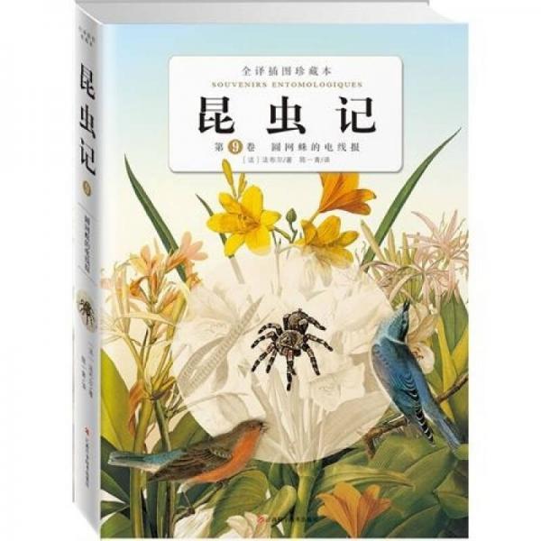 昆虫记第九卷: 圆网蛛的电线报