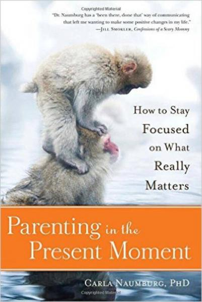 Parenting in the Present Moment  How to Stay Foc