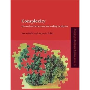 Complexity:HierarchicalStructuresandScalinginPhysics(CambridgeNonlinearScienceSeries)