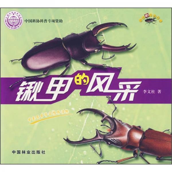 锹甲的风采-奇妙的昆虫世界