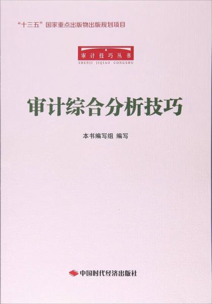 审计综合分析技巧/审计技巧丛书
