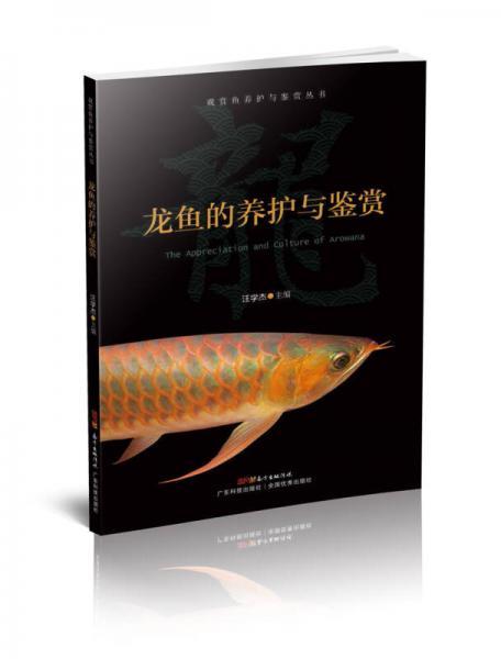 龙鱼的养护与鉴赏