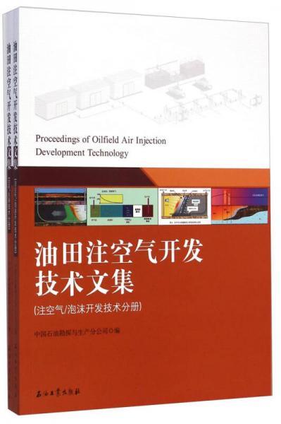 油田注空气开发技术文集(两分册)