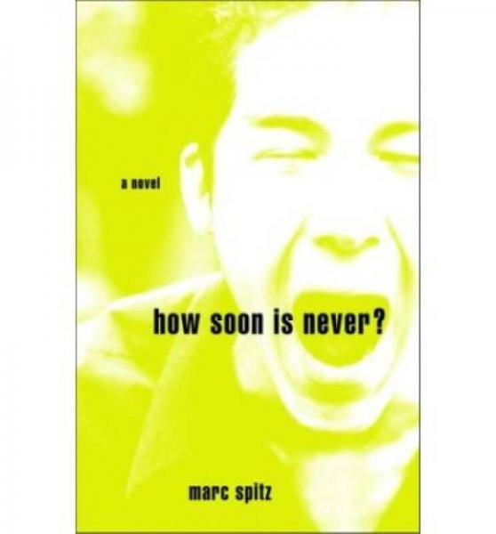 How Soon Is Never?  A Novel
