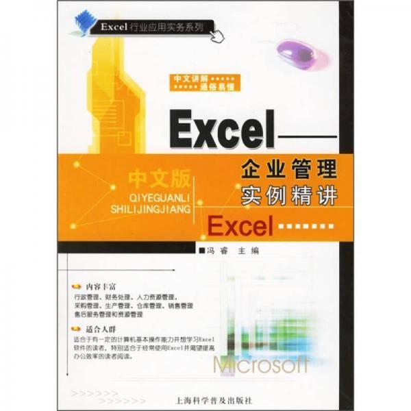 Excel:企业管理实例精讲