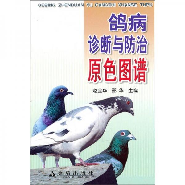 鸽病诊断与防治原色图谱