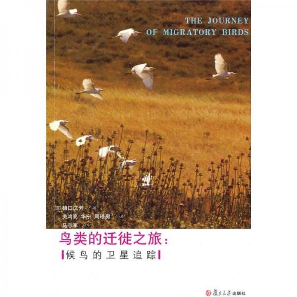 鸟类的迁徙之旅