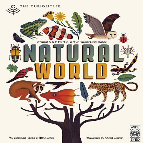 英文原版Curiositree: Natural World自然之美 奇妙的世界