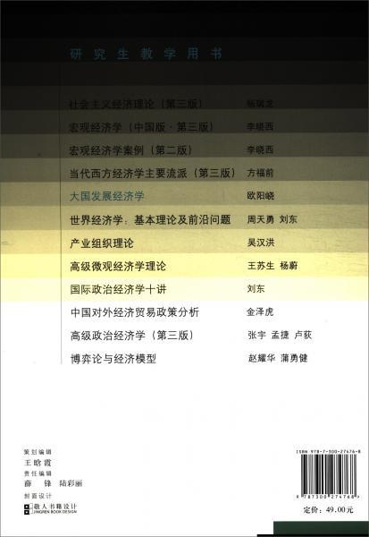 大国发展经济学(研究生教学用书)