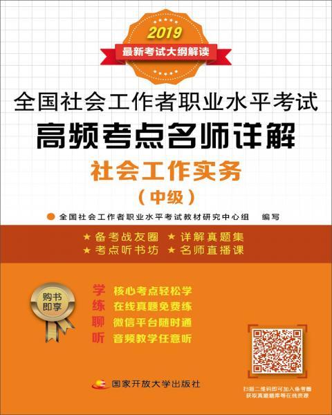 高频考点名师详解:社会工作实务(中级)