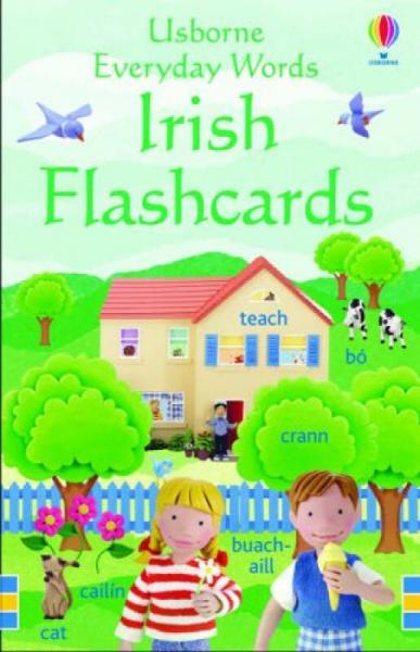 Everyday Words in Irish Flashcards[爱尔兰语日常词汇抽认卡]