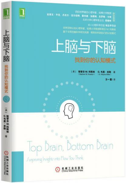 上脑与下脑:找到你的认知模式