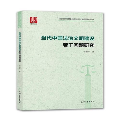当代中国法治文明建设若干问题研究