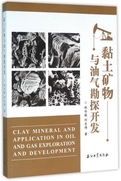黏土矿物与油气勘探开发