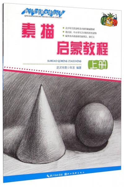 青少年宫美术培训丛书:素描启蒙教程(上册)