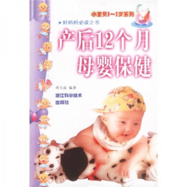 小宝贝0-3岁系列:产后12个月母婴保健
