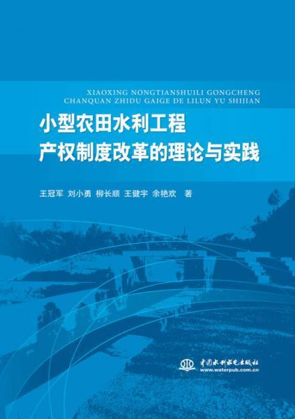 小型农田水利工程产权制度改革的理论与实践