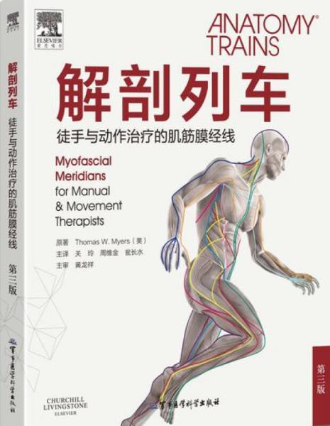 解剖列车——徒手与动作治疗的肌筋膜经线