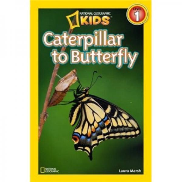 National Geographic Readers: Caterpillar to Butterfly美国《国家地理》杂志-儿童科普分级阅读,第1级:从毛毛虫到蝴蝶 英文原版