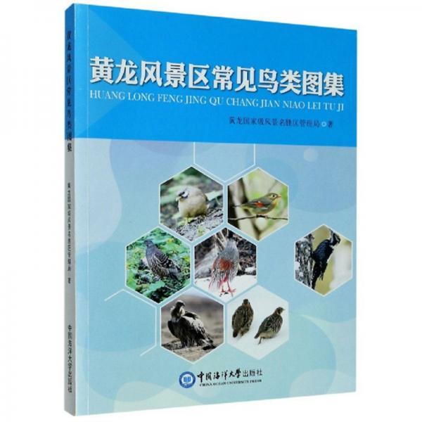 黄龙风景区常见鸟类图集