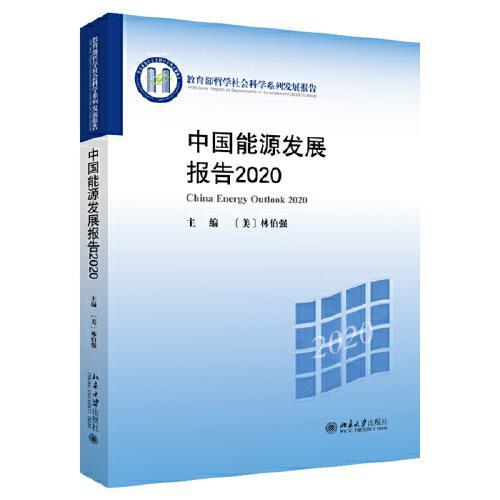 中国能源发展报告2020