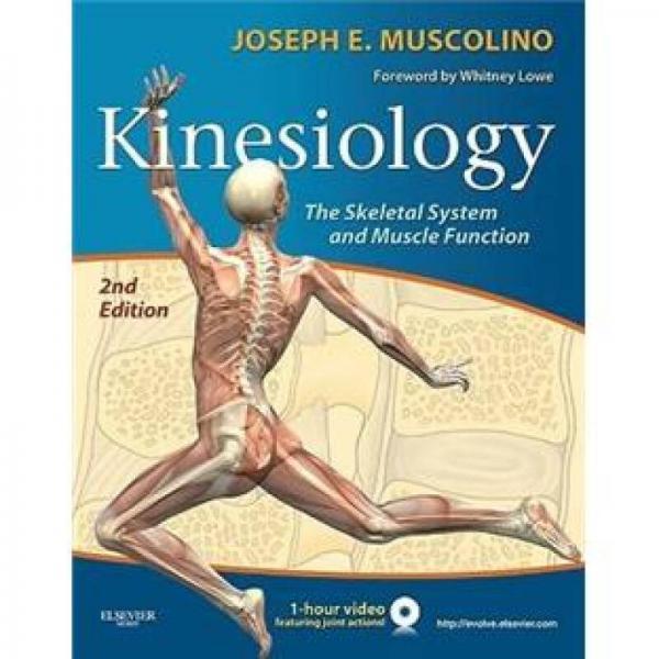 Kinesiology运动学:骨骼系统和肌肉功能,第2版 英文原版