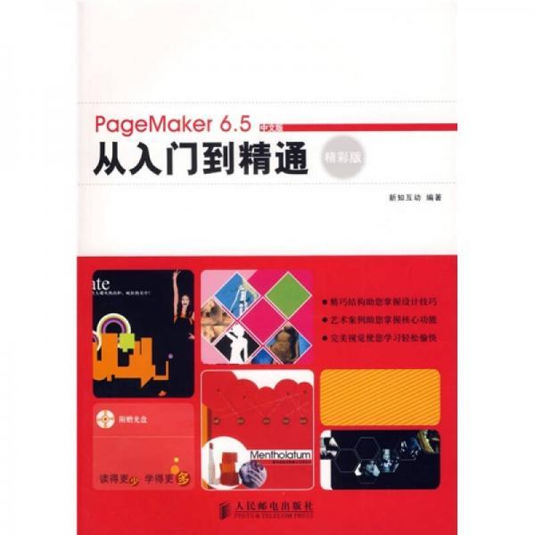 PageMaker 6.5中文版从入门到精通精彩版(精彩版)