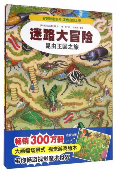迷路大冒险:昆虫王国之旅