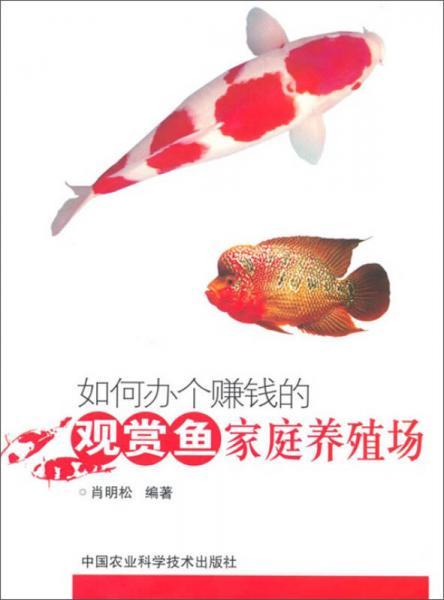 如何办个赚钱的观赏鱼家庭养殖场