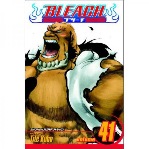 Bleach, Vol. 41