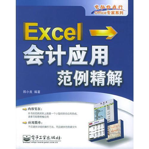 Excel会计应用范例精解