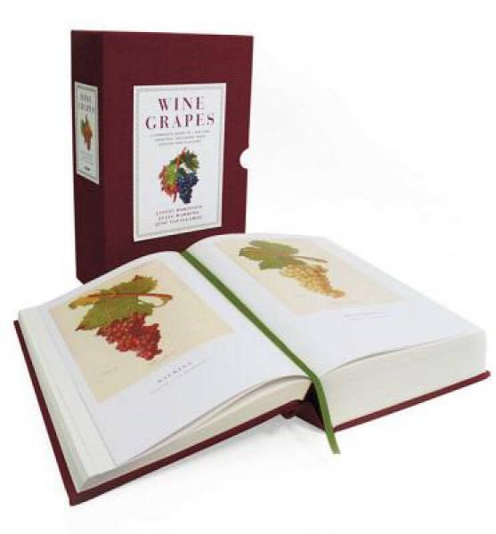 Wine Grapes: A Complete Guide to 1,368 Vine Varieties[绾㈤���¤��]