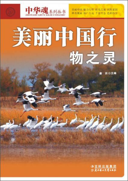 中华魂系列丛书·美丽中国行:物之灵