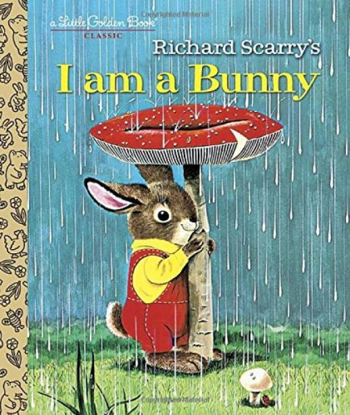 I Am A Bunny我是小兔子 英文原版