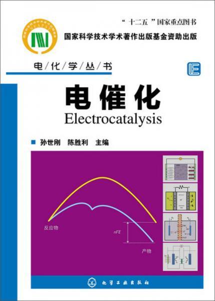 电化学丛书:电催化