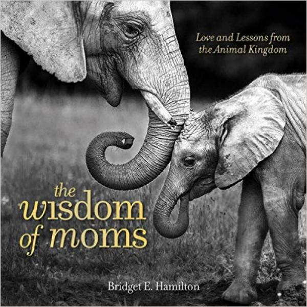 The Wisdom of Moms  Love and Lessons From the An