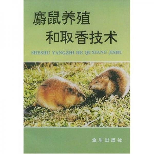 麝鼠养殖和取香技术