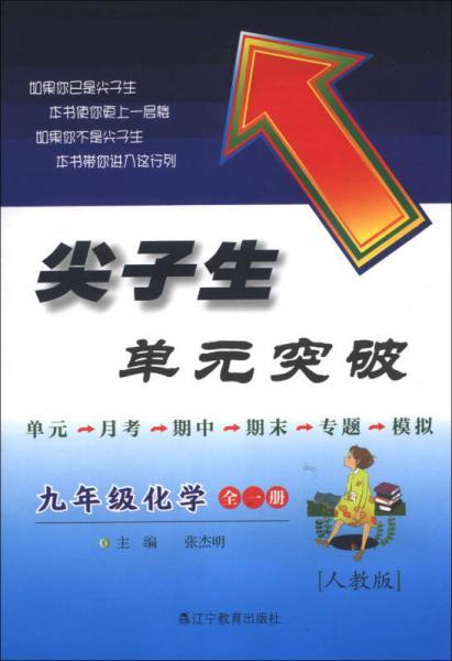 尖子生单元突破:9年级化学(全1册)(人教版)(2013秋)