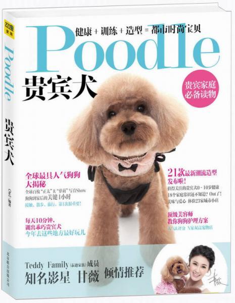 Poodle 贵宾犬