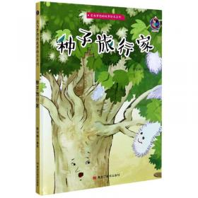 种子:走出迷茫,找到人生和工作的意义(精装+彩印)焦虑情绪调节自我认知个人成长成功励志书籍