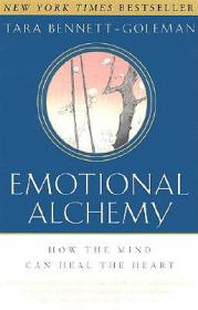 Emotional Fitness at Work: 6 Strategic Steps to Success Using the Power of Emotion