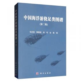 象棋冠军炮马争霸对局集锦(修订版)