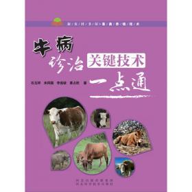 牛病防治手册