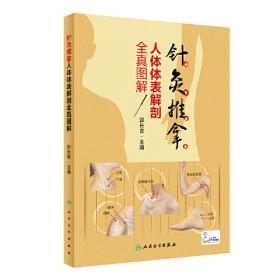 中医刺血疗法(中医外治特色疗法临床技能提升丛书)