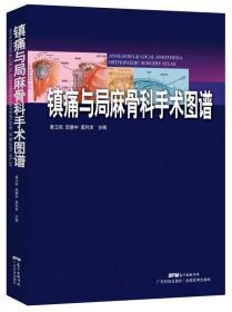 镇痛注射技术图解(第5版)