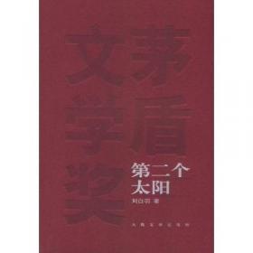 第二个太阳/新中国70年70部长篇小说典藏