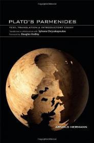 心理治疗核心能力系列丛书·支持性心理治疗导论(翻译版)