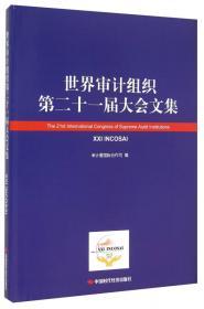 世界审计组织全球调查报告集